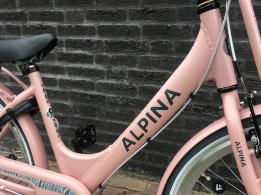 Alpina Clubb M 24 inch Desert Pink Matt - Alpina_Clubb_24_Desert_Pink_matt_2.jpg