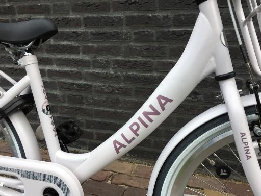 Alpina Clubb M 22 inch Frosty Pink Matt - Alpina_Clubb_22_Frosty_Pink_matt_2.jpg